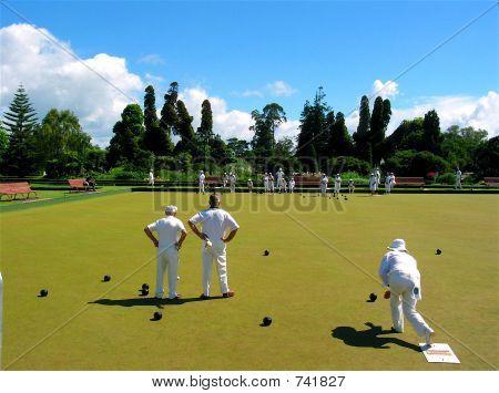 Lawn Bowling in Rotorua
