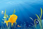 Gold fish in sea, underwater life, seaweeds. Vector illustration poster