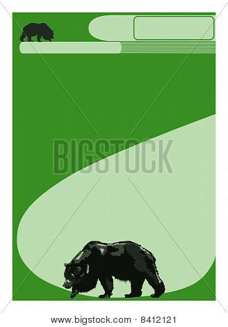 Ecology - Bear