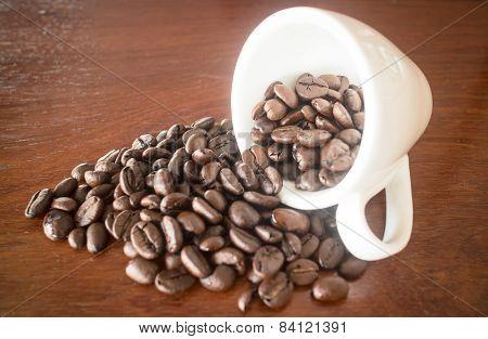 Roast Coffee Bean In White Mug