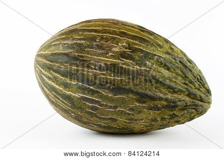 Whole single Piel de sapo melon on white background