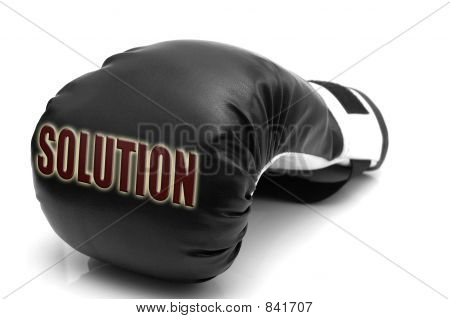 SOLUTION - a boxing glove