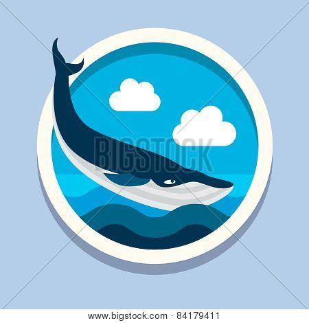 Killer whale, big fish. Travel, flat style vector illustration poster
