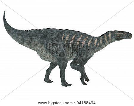 Iguanodon Side Profile