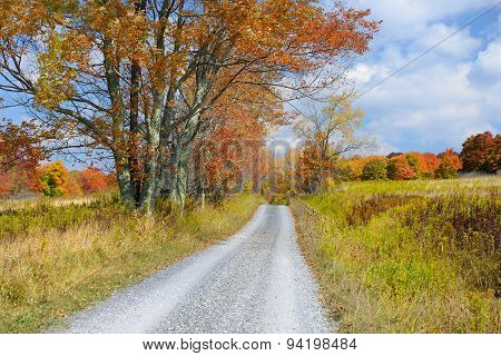 Country Road in Autumn in West Virginia