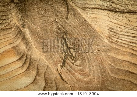 Details of a rustic wood grain for wallpaper