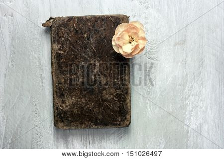 A photo of an old book with a pink carnation flower, shot from above on a light blue wooden board, with copyspace