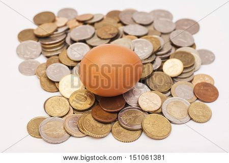 egg lying on and coins isolated on white