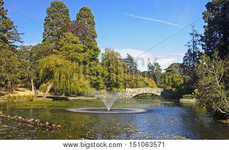 Beacon Hill Park in Victoria (Vancouver Island Canada)