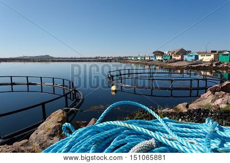 Fish rope and pens, Saint Pierre, france.