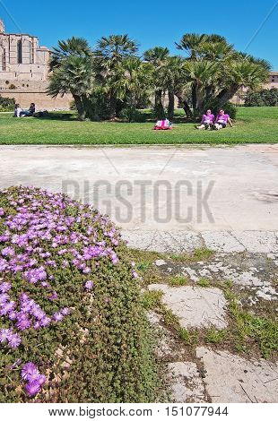 PALMA DE MALLORCA BALEARIC ISLANDS SPAIN - APRIL 10 2016: Two German ladies in purple t-shirts rest in the sun after finishing women's marathon in Palma de Mallorca Balearic islands Spain on April 10 2016.