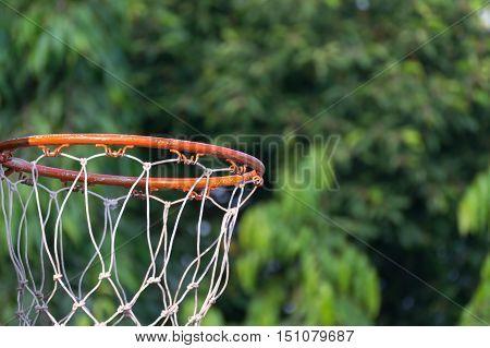 Basketball Hoop In Park