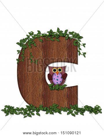 Alphabet Deep Woods Owl C