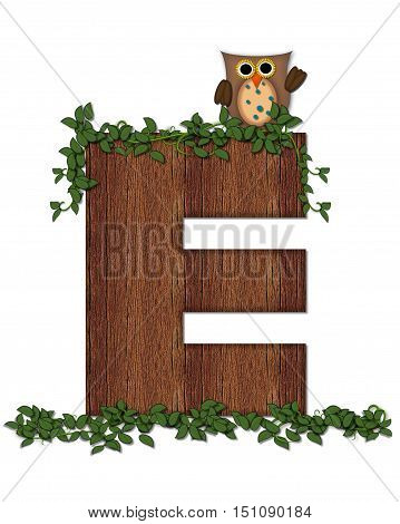 Alphabet Deep Woods Owl E