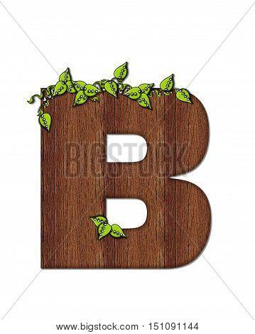 Alphabet Woodsy B