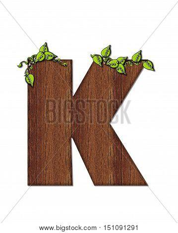 Alphabet Woodsy K