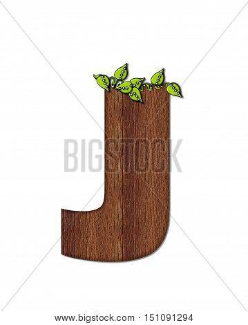 Alphabet Woodsy J