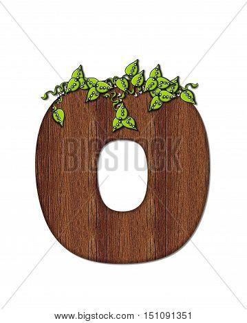 Alphabet Woodsy O