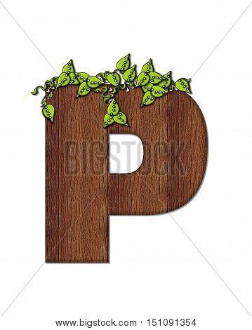 Alphabet Woodsy P