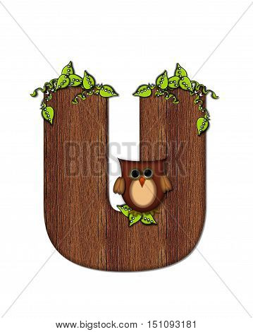 Alphabet Woodsy Owl U