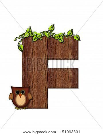 Alphabet Woodsy Owl F
