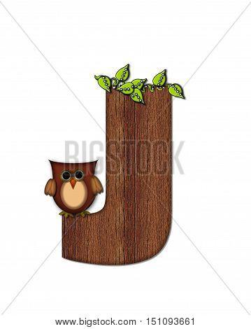 Alphabet Woodsy Owl J