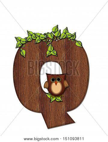 Alphabet Woodsy Owl Q
