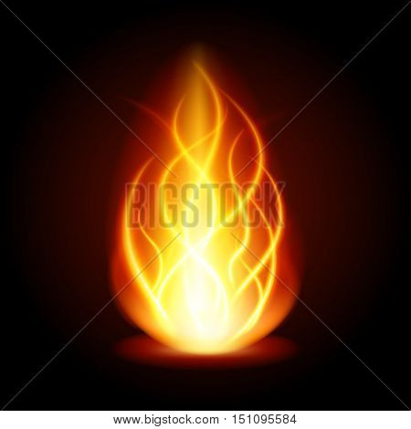 Abstract Fire Flame Light On Black Background Vector Illustration.