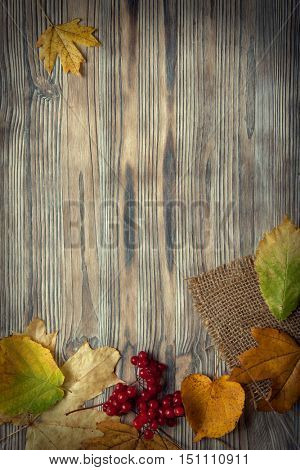 autumn leaf on wood black background (top view) orange leaf on old grunge wood deck, copy place for inscription, top view, tablet for text