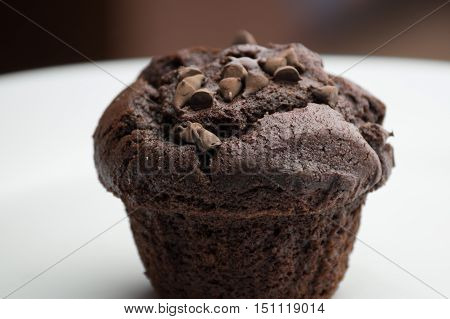 Fresh baked chocolate cup cake muffins. Chocolate cup cake muffins.