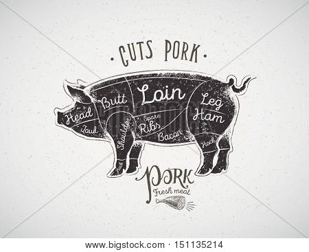 Graphic silhouette of a pig with the line of cutting for the butcher.