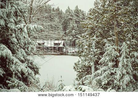 Winter Scene: A cabin in the snow in the Adirondack
