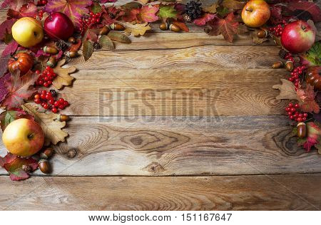 Thanksgiving concept with apples acorns berries and fall leaves. Thanksgiving background with seasonal berries and fruits. Fall concept.