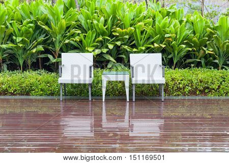 Green garden with an outdoor furniture group with rattan chairs and table in a patio, canna and shrub,