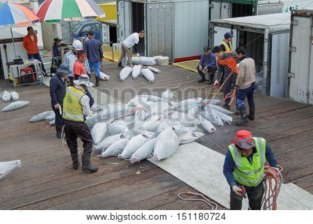 Busan South Korea - September 22th 2016: Busan fish port sorting of hulks of a frozen tuna.