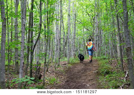 A Man hiking a path through the forest on the Bruce Trail in Ontario Canada