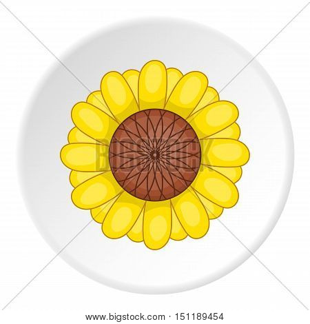 Sunflower icon. artoon illustration of sunflower vector icon for web