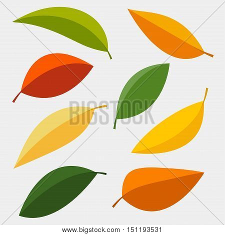 Set of colorful autumn leaves. Vector illustration