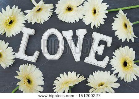 Beige gerbera flowers frame on dark wood with love letters