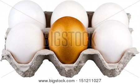 Golden Egg In Egg Carton With White Eggs - Isolated