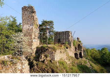 ruin of zubstein castle - evening shine - czech republic