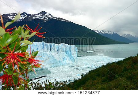 Pring on glacier. Postcard impressive Patagonia Argentina. Spring is coming on the Perito Moreno Glacier. Huge ice walls, beautiful mountains and a large emerald lake, make insignificant a cruise