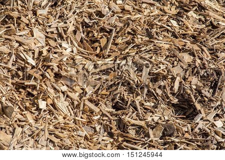 Processed Wood Waste And Wood Shavings