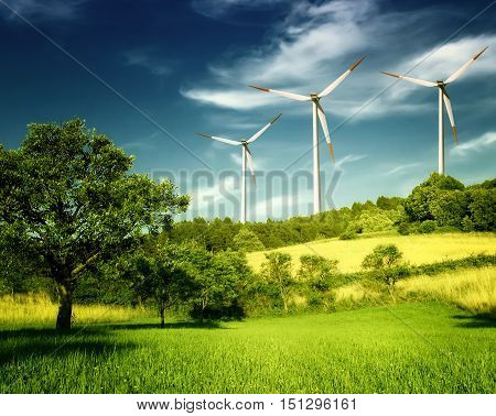Green Meadow With Wind Turbines Generating Electricity