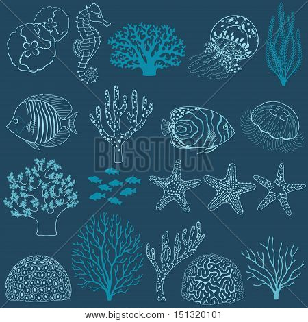 Collection of design elements: corals, fish, jellyfishes, sea horse and sea stars.