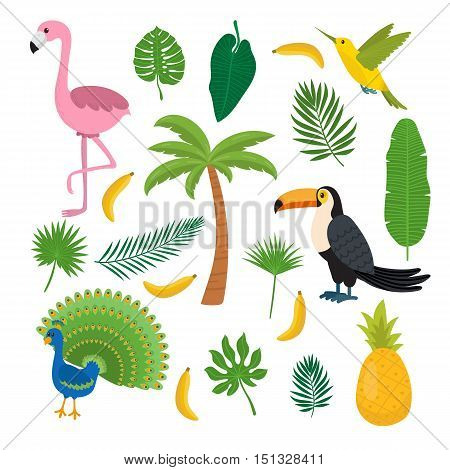 Toucan hummingbird and flamingo. Summer tropical graphic elements. Flat design. Jungle floral background. Jungle birds. Banana pineapple palma. Vector illustration