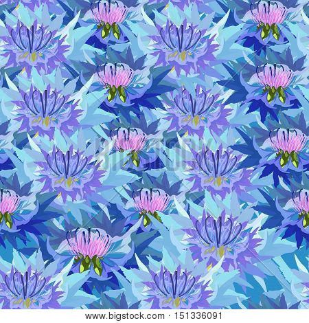 Seamless Pattern Of Wild Flowers Knapweed Closely Spaced. Vector Illustration