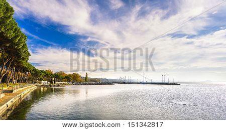 Marina promenade or esplanade and pine trees in Bolsena lake Italy.
