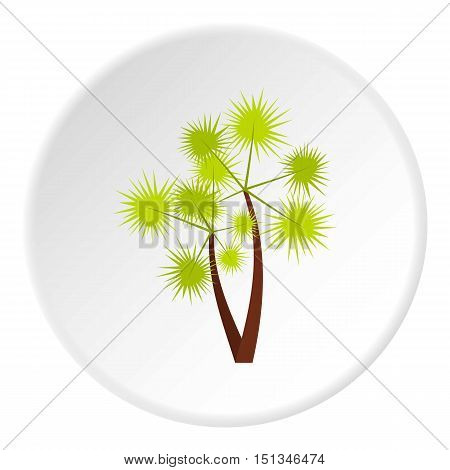 Prickly palm icon. Flat illustration of prickly palm vector icon for web