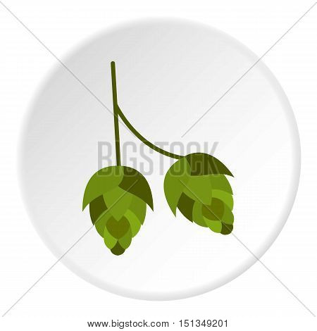 Hops icon. Flat illustration of hops vector icon for web